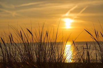 Zonsondergang op het strand van Willy Sybesma