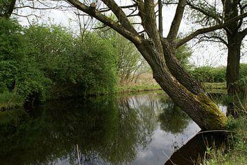 De stilte in Het Jagersveld.