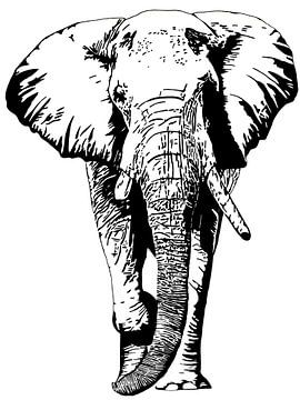 Tembo von Irene Jonker