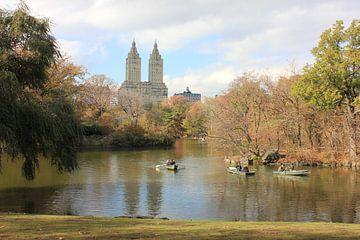 The Eldorado gezien vanaf Central Park New York City van Elisa Koot