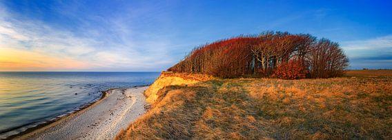 Ostseeküste im Abendlicht