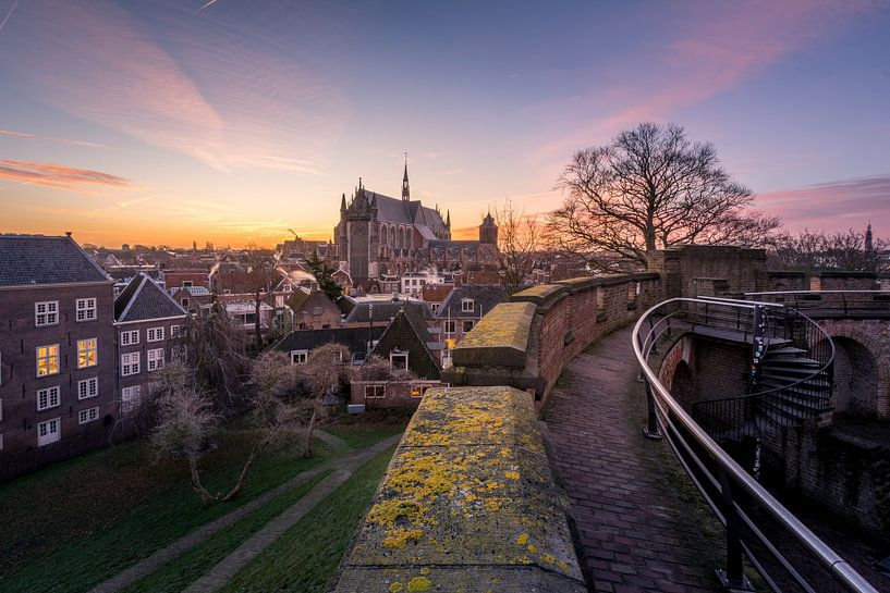 Blik op Leiden sur Martijn van der Nat