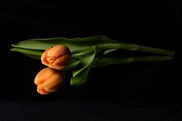 Schönes Orange ist nicht hässlich! von As Janson
