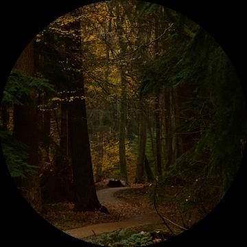 De weg is belangrijker dan de bestemming van Leontien van der Linden - Wapenaar