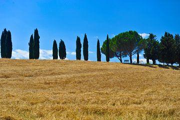 Toscane van Reinier van de Pol