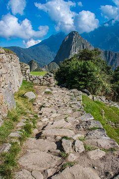 Inca trail naar Machu Picchu, Peru van Rietje Bulthuis