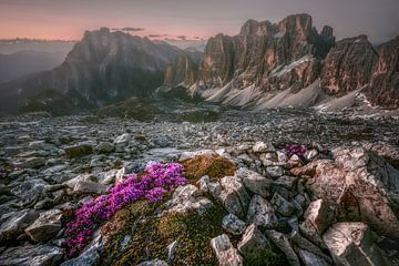 Sonnenuntergang Dolomiten von Peter Poppe
