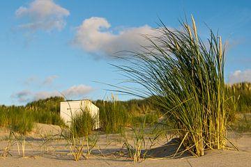 Strandhaus in den Dünen von René Weijers