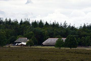 Schafstall auf der Heide von Gerard de Zwaan