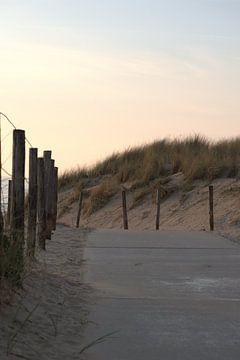 Strandausgang von Marvin Van Haasen
