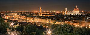 Panorama beeld van Florence, Italië