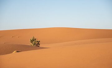 Woestijn Erg Chigaga, Marokko van Jan Fritz