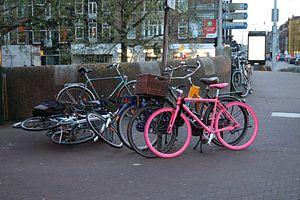 roze fiets van René van Beeten