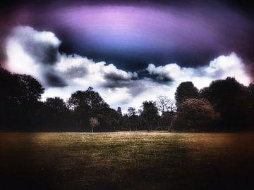 Feld mit violettem Himmel von Elo Mars