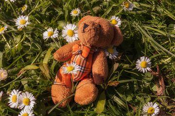 Kleiner Teddybär van Dagmar Marina