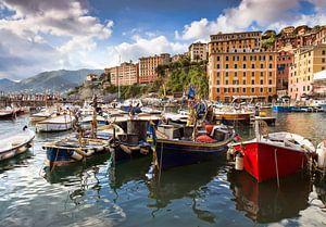 Vissersboten in haven van Camogli