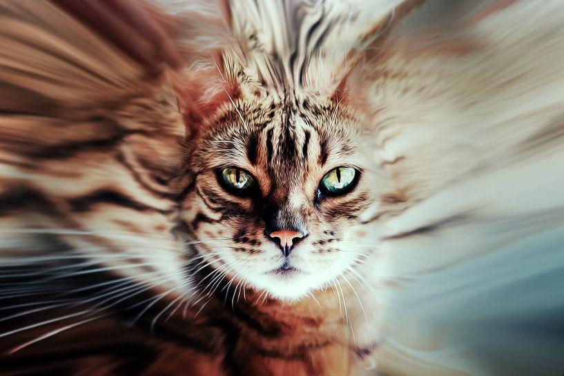 Surreal cat van Nannie van der Wal