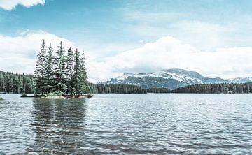 Canadees landschap van meer en bergen van Hege Knaven-van Dijke