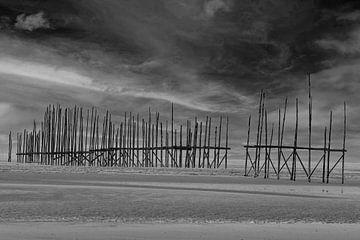 Strandpfosten auf Vlieland von Frits Hogewoning