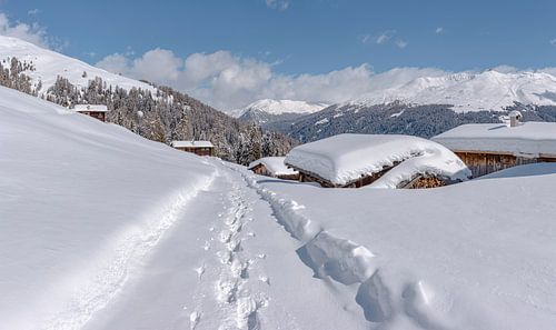 Staffelalp in het Landwassertal, Davos, Graubünden, Zwitserland van