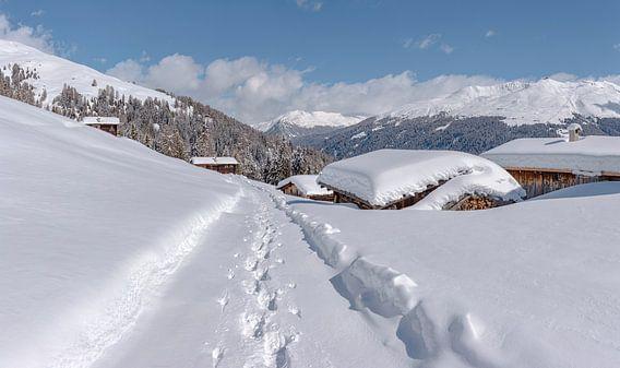 Staffelalp in het Landwassertal, Davos, Graubünden, Zwitserland van Rene van der Meer