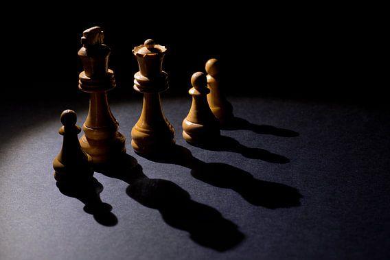 schaakstukken van Toon de Vos