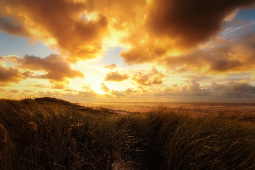 Sunset Stroll II van Cho Tang