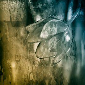 Abstracte Tulp van Ellen Driesse