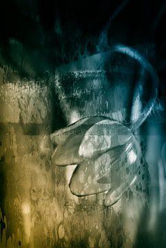 Abstracte Tulp van