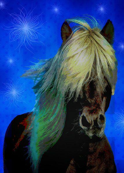 Icelandic Horse von mimulux patricia no