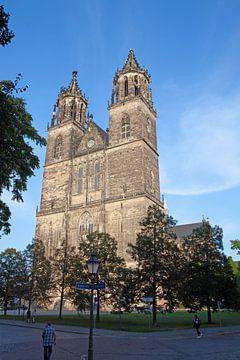 De Dom van Maagdenburg in de avondzon van t.ART