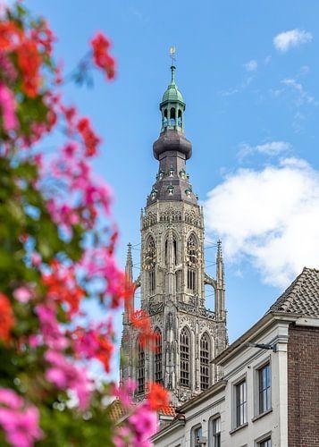 Breda, zomerse foto Grote Kerk
