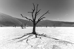 Namibië landschap zwart / wit van