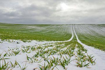La neige sur le terrain sur Christian Buhtz