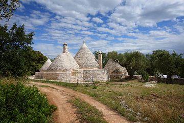 Kegelförmige Trullihäuser und Olivenbäume in Apulien von iPics Photography