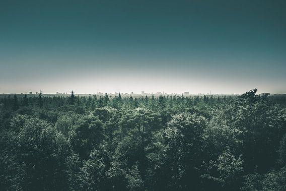Utrecht skyline in the distance from Austerlitz Pyramide van Alessia Peviani