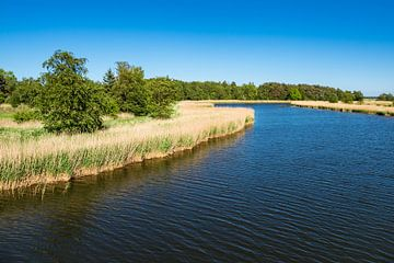 Landscape with water sur