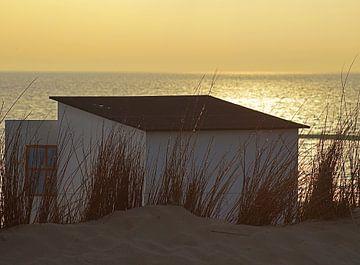Texel, strandhuisje  sur Elfriede de Jonge Boeree