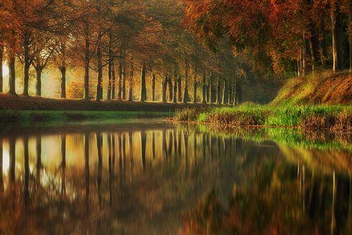 Autumn Reflections von Martin Podt