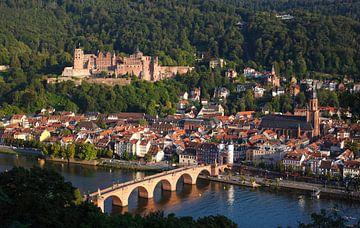 Kasteel, Neckar, oude binnenstad, Heidelberg van Torsten Krüger