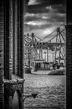 Blick auf den Containerterminal Toller Ort in Hamburg von Ingo Boelter