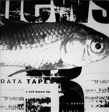 Vis op krantenpapier zwart wit van Muurbabbels Typographic Design