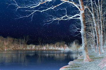 Winter landschap van Corinne Welp