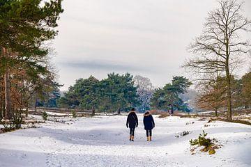 wandelaars in de sneeuw van