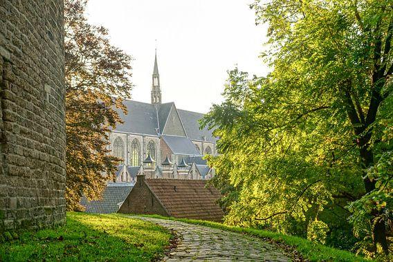 Burcht van Leiden van Dirk van Egmond