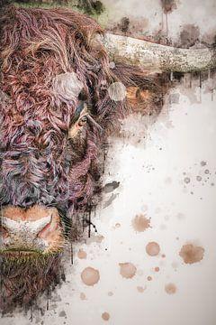Tuschezeichnung eines kräftigen Highlander-Bullen von John van den Heuvel