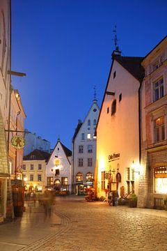 Haus Olde Hansa, Unterstadt, Altstadt , bei Abenddämmerung, Tallinn, Estland, Europa