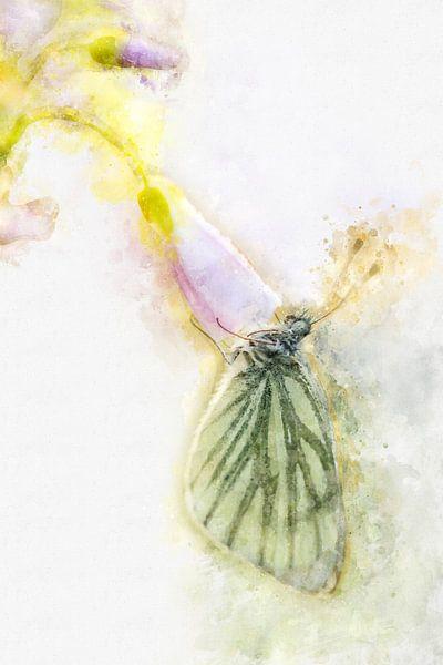 Vlinder 4 van Silvia Creemers