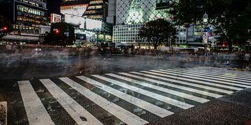 Shibuya Kreuzung von Stefan Havadi-Nagy