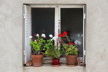 Venster met geraniums van Henk Elshout